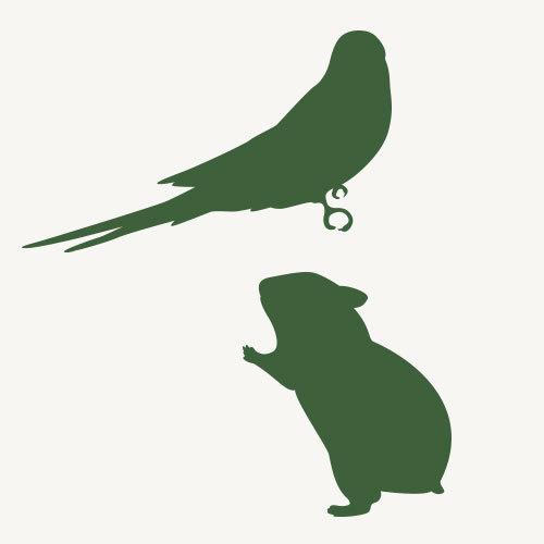 小鳥・ハムスターなど
